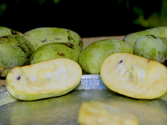 A cut pawpaw sits on a platter along with other, whole, fruits at Nash Nursery in Owosso Wednesday, Oct. 5, 2016.