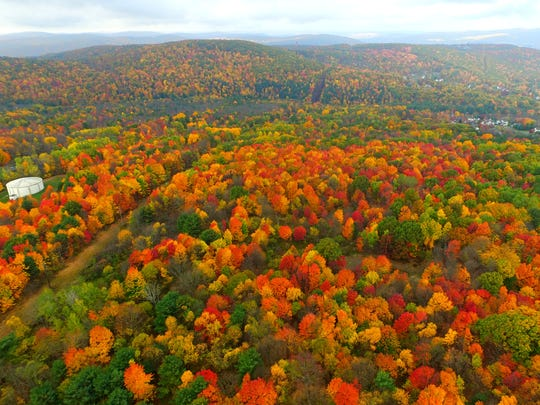 Fall foliage looking west over Vestal.