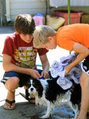 Duke and his buddies: The second annual ?Paws for the Cause? was a happy day for both pets and people. Stayton Veterinary Hospital hosted the combination dog wash/food drive on Aug. 20 and collected both food and funds to benefit SafeHaven Humane Society and the Marion Polk Food Share.