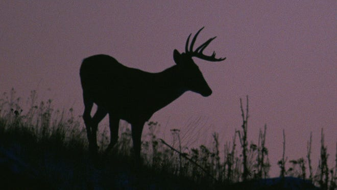 Deer hunters will be heading to their blinds on Monday for the opening day of archery season.