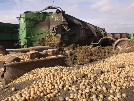 SPILLED SOYBEANS