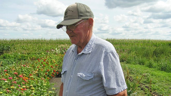 """Dennis Stelter, who donated about 1,000 pounds of vegetables last year to the Kitchen Table Food Shelf, in nearby Marshall, Minn., stands in his garden in Wood Lake, Minn., Monday, Sept. 18, 2017.  """"It's my good deed for the summer, I suppose,"""" he said."""