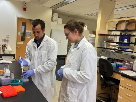 Nick Teets, left, and Leslie Potts in a University of Kentucky research lab.