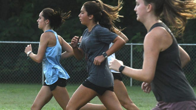 Isabella Loue, Jillian Green and the rest of the defending state champion Hoggard girls cross country team won't toe the starting line until at least Sept. 1 after the NCHSAA's decision about fall sports made Wednesday.