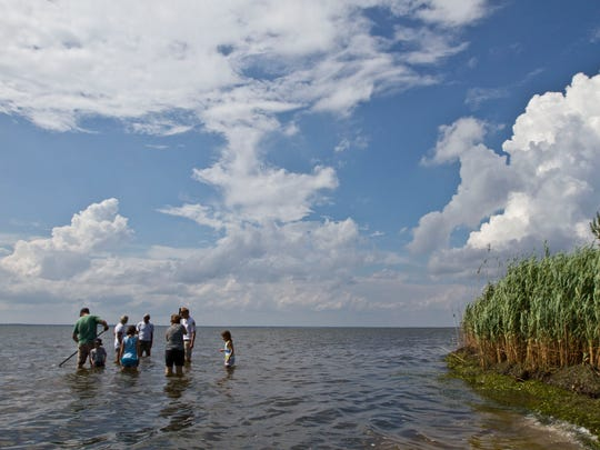 Visitors clam in Barnegat Bay off Island Beach State Park. A Rutgers study revealed the ecological health of the bay to be in steep decline.