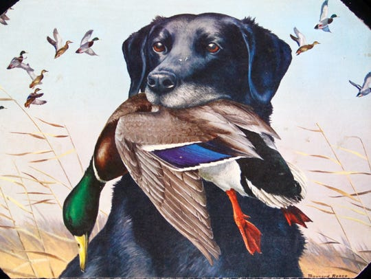 Iowa artist Maynard Reece chose hunting dog King Buck