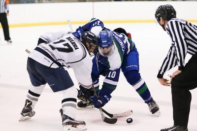 Geneseo Hockey Injury Statistics - image 2