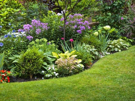 Briefs Perennials class and gardening talk