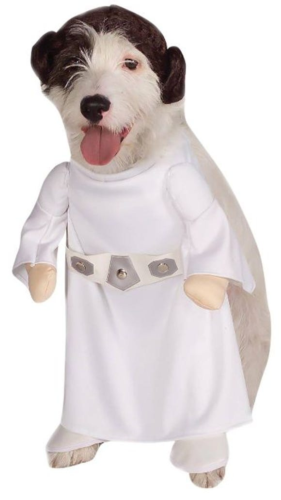 A Star Wars costume for dogs from Target for Halloween.