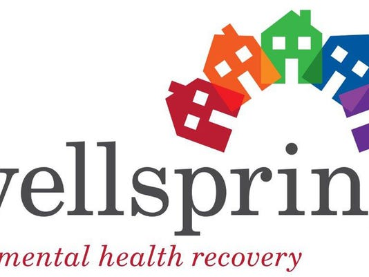 DL Wellspring New Logo Medium from cropped.jpg