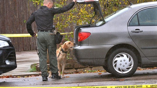A K-9 dog searches the trunk of a car parked in the driveway at 25 Elwood Road in Franklin on Thursday morning, as police collect evidence after a 26-year-old man died in an early-morning shooting.