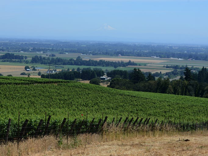 Oregon: The new Wine Country USA