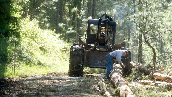 Robin Miller detaches logs after skidding them to a log landing at his tree farm near Crawfordsville, Ore., Thursday April 21, 2016.