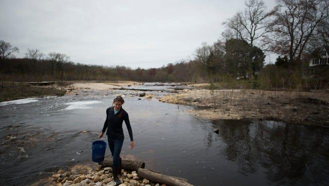Amanda Poskaitis of Maryland Coastal Bays works at the dam removal sitein Wednesday, April 15, Bishopville.