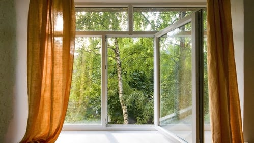 Here are 4 ways to have cleaner air in your home.