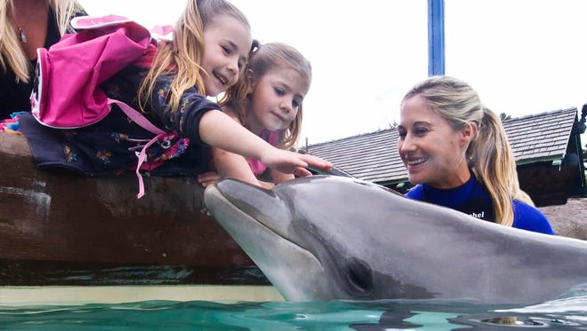 SeaWorld San Diego guests get close with inhabitants at Dolphin Point. SeaWorldSeaWorld San Diego guests enjoy a dolphin connection at the park's Dolphin Point attraction.