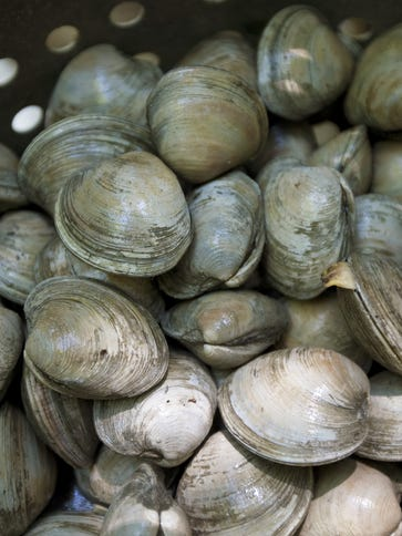 Clams waiting to be steamed