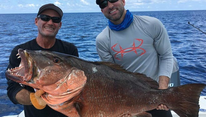 A cubera snapper like this one weighing more than 60 pounds, caught last year aboard Off the Chain fishing charters out of Sailfish Marina with Capt. Scott Fawcett of Jensen Beach (left), will certainly get an angler's adrenaline pumping.