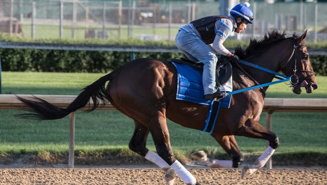 Tenfold, trained by Steve Asmussen, works out a Churchill Downs prior to the Belmont Stakes. June 4, 2018.