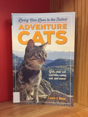 Adventure Cats by  Laura J. Moss