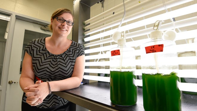 University of Delaware scientist Jennifer Stewart and her team at the University of Delaware College of Earth, Ocean and Environment in Lewes are working to create sustainable algae-based biofuels that could reduce carbon dioxide and other harmful emissions in the atmosphere.