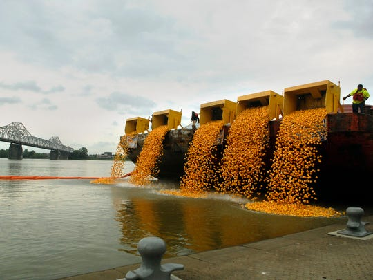 Over 28,000 rubber ducks were dropped in the Ohio River in a race for a new car at the 13th annual Ken-Ducky Derby race, a fundraiser for the Harbor House of Louisville, at Waterfront Park.    April 30, 2016