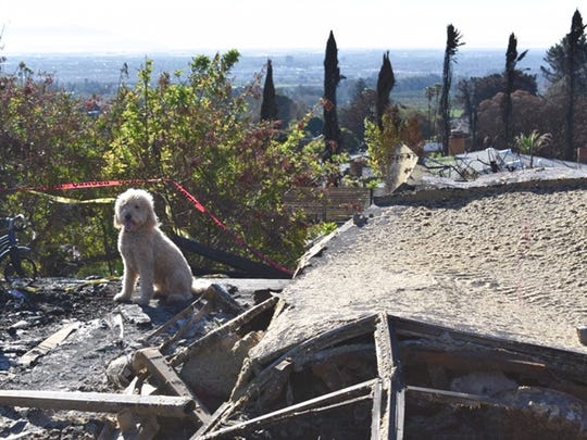 Dylan Chappell's Ventura home was destroyed in the