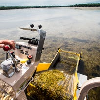 Okoboji residents could face hefty fine if they use chemicals to fight lake weeds