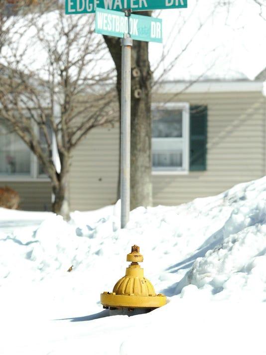 Snow Hydrants