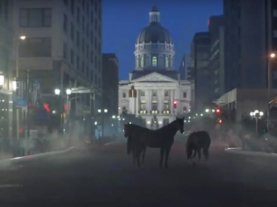 Horses! On the circle!