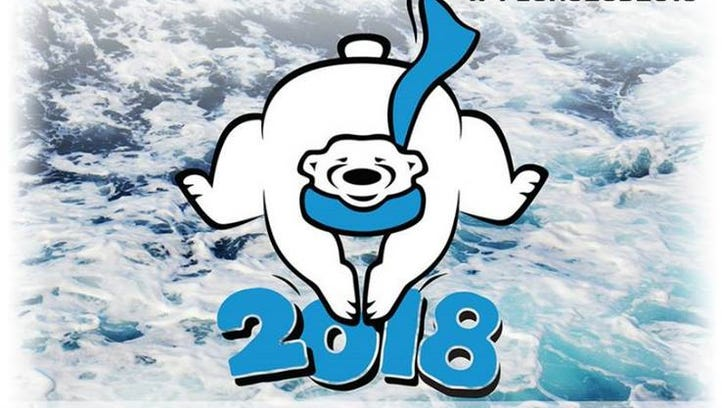 16th Annual Sioux Falls Polar Plunge raises more than $70,000 for Special Olympics