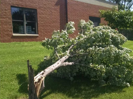 Norwalk Schools had minor damage from storms this week, including a few downed trees from Thursday's storms.