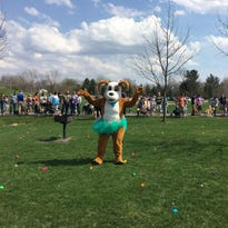 Dogs get their own Easter egg hunt at Hawk Island Park