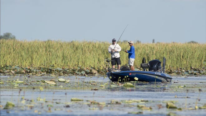 Fishermen try their luck in the shallow water of Lake Okeechobee in August 2016.