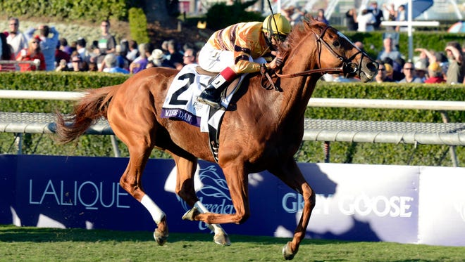 John Velazquez aboard Wise Dan won the 2012 Breeders' Cup Championships, which helped him win horse of the year for 2012. He lost a race this year, but won the Mile, which should get him a repeat of the honor.