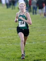 Area high school cross country teams competed at Laconia