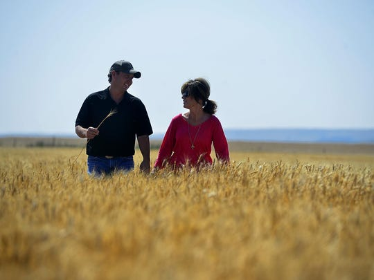 Trampus and Staci Corder of Corder and Associates walk in a field of wheat near Fort Benton.