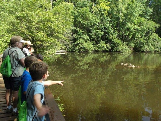 Friends Day at Paris Mountain State Park