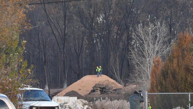 Blackened trees near the gas line explosion in Orion Township on November 20, 2017.