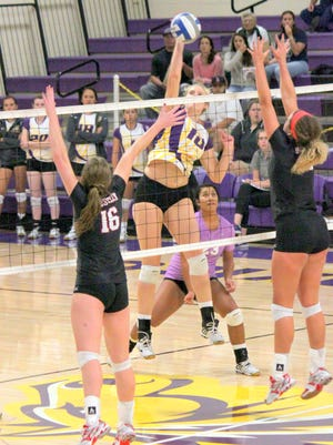 The WNMU volleyball team were sixth in the conference in kills per set, but posted good numbers, going 14-4 in the RMAC.