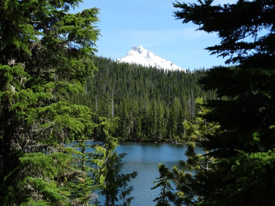 Clagett Lake is one of the Firecamp Lakes in the Mount Jefferson Wildernes that can be reached via Crown Lake Trail.