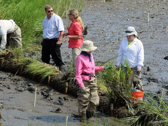 Partnership for Delaware Estuary and volunteers finish