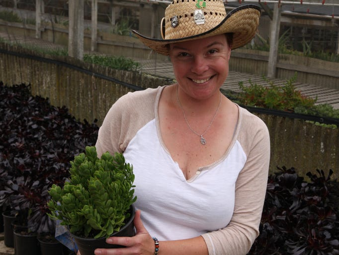 Holding a pot of Crassula, Tiffany Polli of Succulent Gardens, Castroville proposed several varieties for this area