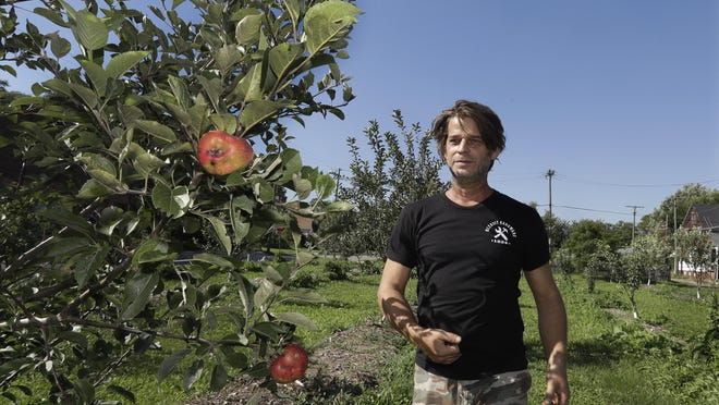 Ron Shelton stands by one of his apple trees in Detroit. Some Detroit residents are using a do-it-yourself approach to start businesses amid the city's overabundance of vacant land and wide open spaces. Shelton is sinking his finances into a small apple orchard and cider mill in a neighborhood dotted with empty lots and aging homes.