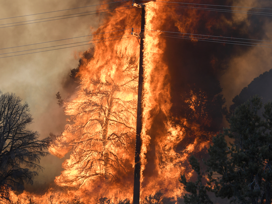 A tree and power pole are consumed by a wildfire near