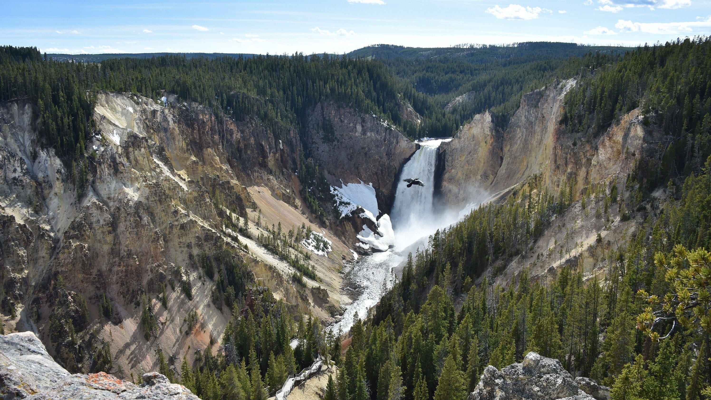 yellowstone national park is it the Celebrated for its flora, fauna, geological structures, and sprawling landscapes,  yellowstone national park is undoubtedly one of the country's greatest centers.