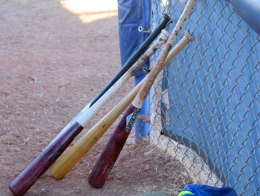 BaseballPromo4.jpg