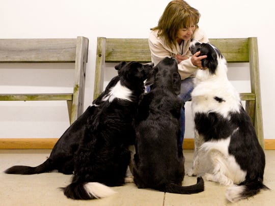 Certified dog trainer Mary Jackson talks to her dog