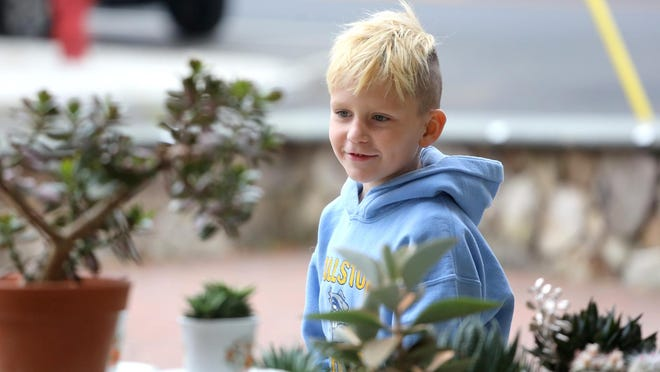 Carson Neill, 7, looks at succulents at the Foothills Farmers Market in uptown Shelby on Wednesday.