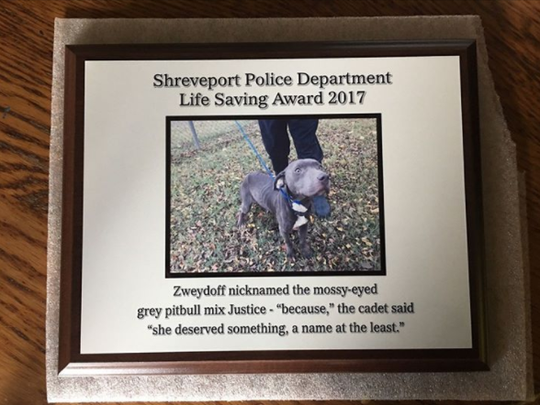 An award gifted to Natalie Zweydoff, a police cadet, by her Academy class.
